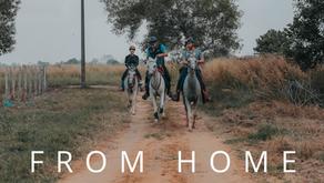 Online horseriding