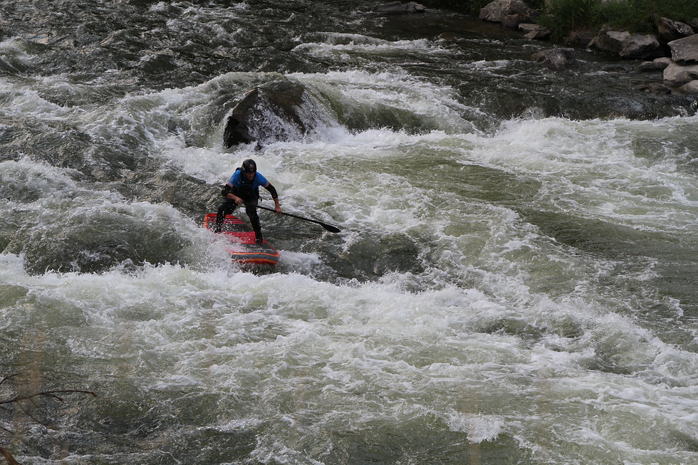 Whitewater SUP Dan Gavere