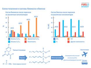 Конверсия кукурузной биомассы в бензин, РТ и водородсодержащий биогаз