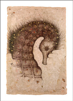 Seahorse - print