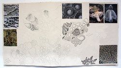 Katherine Fortnum Ceramics - Sketchbook pages (9)
