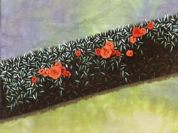Fungi 2     Aspects of Stitch