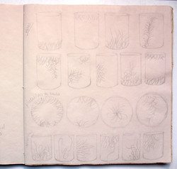 Katherine Fortnum Ceramics - Sketchbook pages (4)