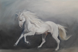 Horse, Oil, 28x21cm, 2017, by Cat Buxton