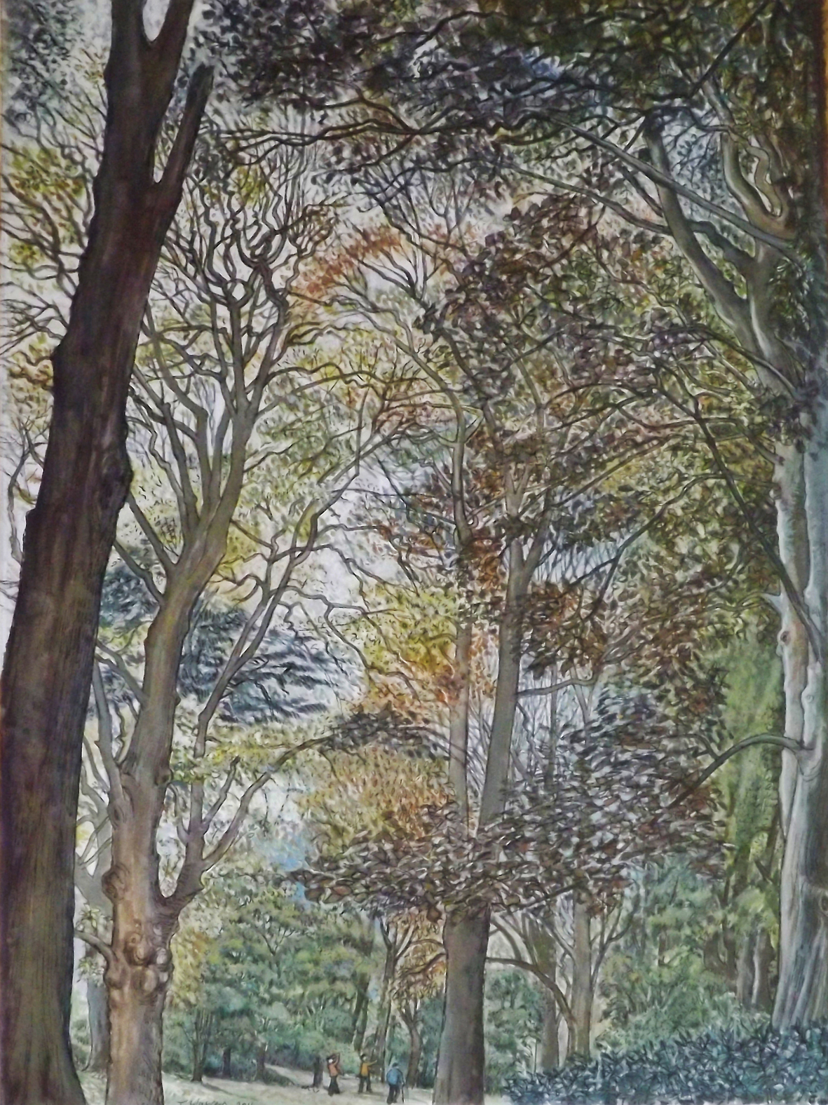 Arboretum Autumn