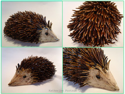 Commissioned Hedgehog