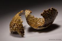 Natural Series #5, handbuilt stoneware, 2013,  11x 6x 6cm  and 10x 7x 6 cm Katherine Fortnum, photograph by Nigel Essex