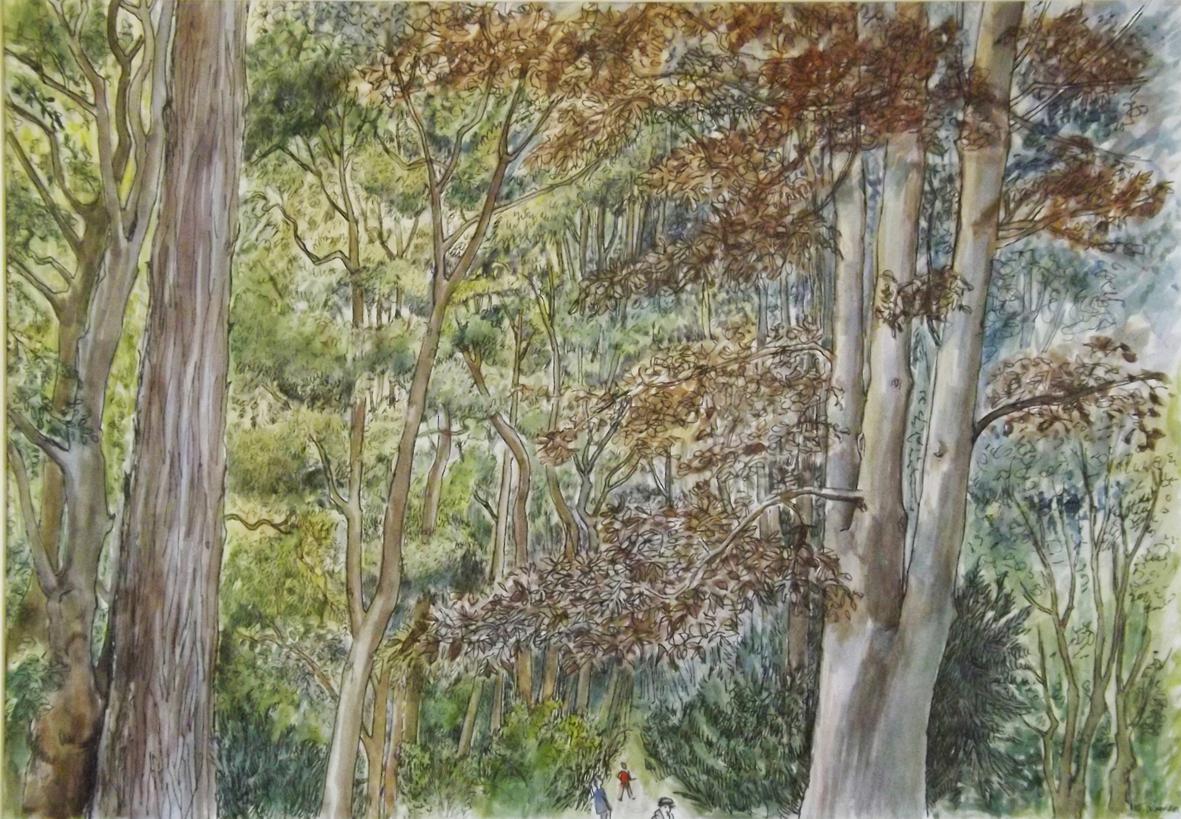 arboretum summer