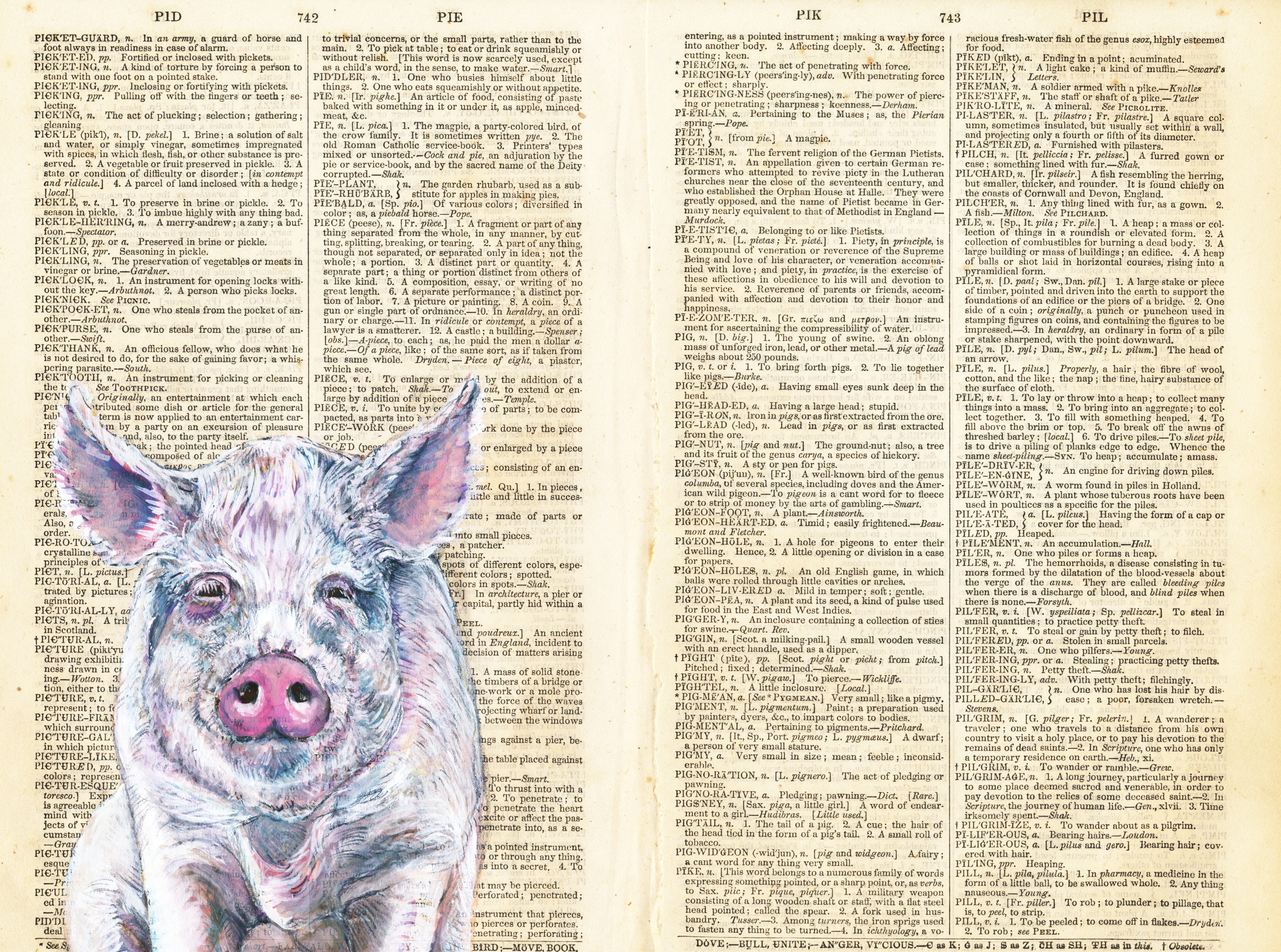 Dictionary Pig original - Gouache-33x40c