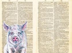 Dictionary Pig original - Gouache-33x40c
