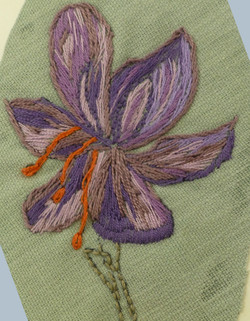 Plant forms 1     Aspects of Stitch