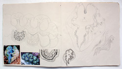 Katherine Fortnum Ceramics - Sketchbook pages (10)