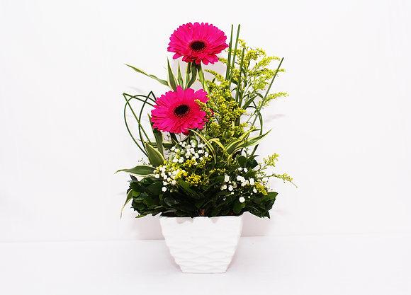 Ikebana de gérberas pink