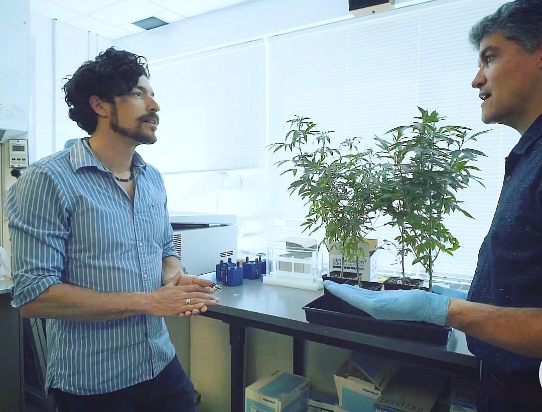 Wade at Anandia Labs