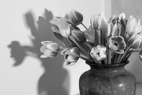 tulips-6087448_1920_edited.jpg