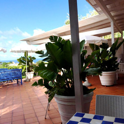 Panoramic breakfast terrace