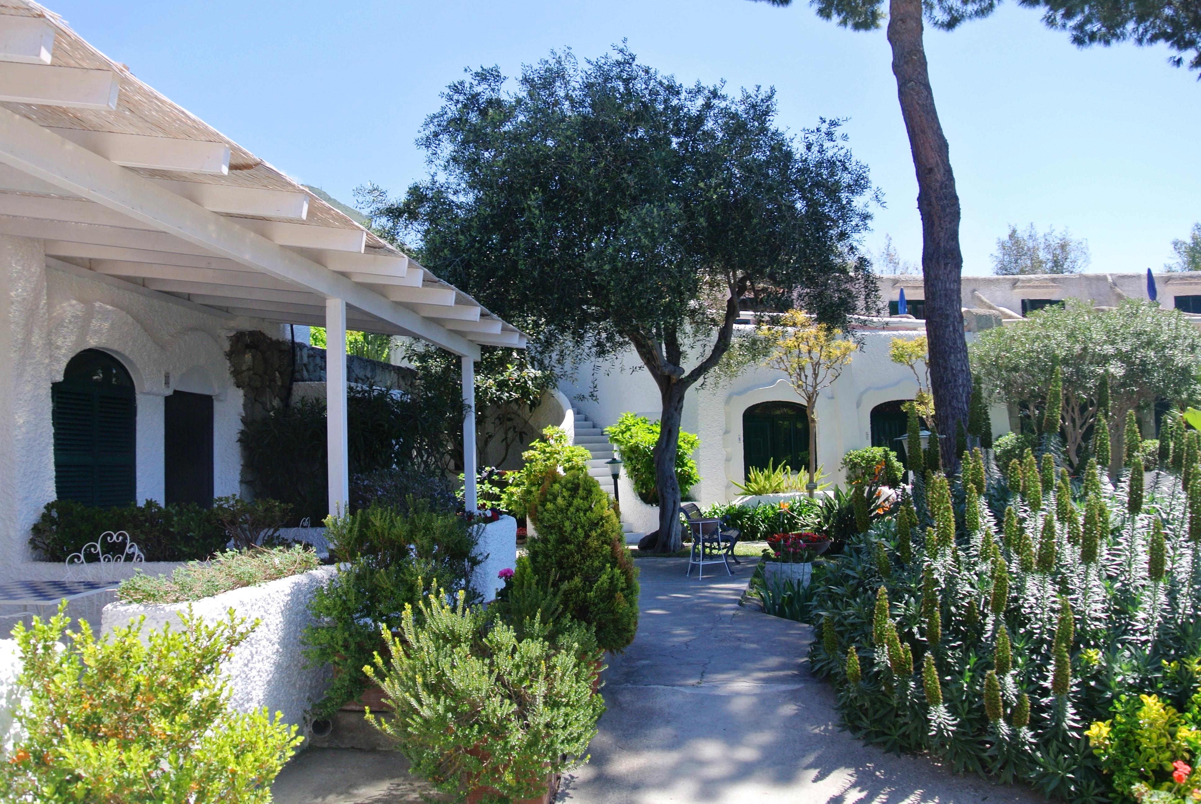 Paradiso Garden