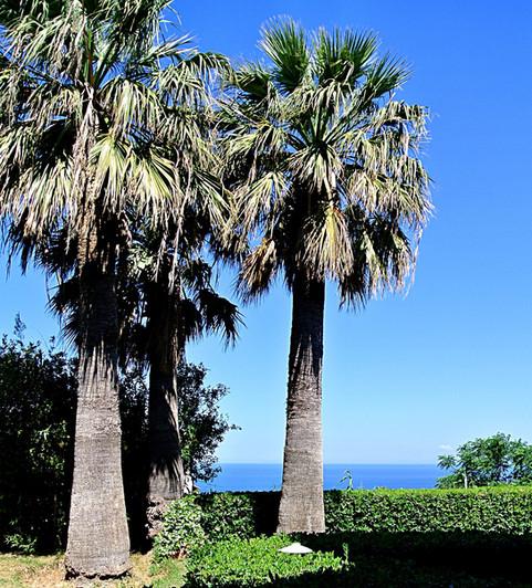Paradiso Terme Resort