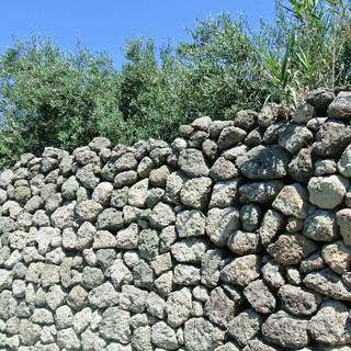 Parracine 'Trockenmauern'