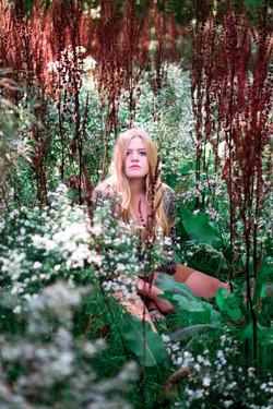 Wildflower Farm with Natalie