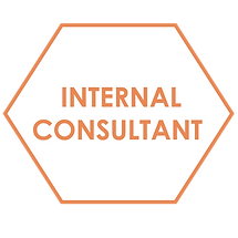 IntConsultant-Honeycomb-01.png