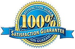 100 saticfaction.jpg