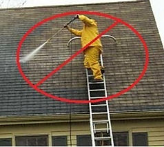 Soft Wash Roof Cleaning 4