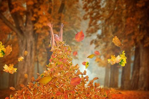 autumn-4603470.jpg
