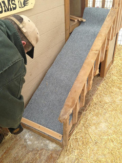 Replacing the carpet on the ramp