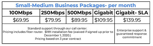 Small business fiber pricing