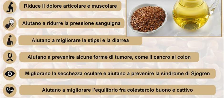 INFOGRAFICA: 8 benefici per la salute dei semi di linio