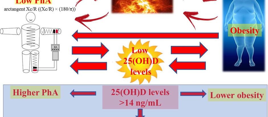 Bioimpedenziometria: correlazione fra angolo di fase e carenza di vitamine D in soggetti obesi