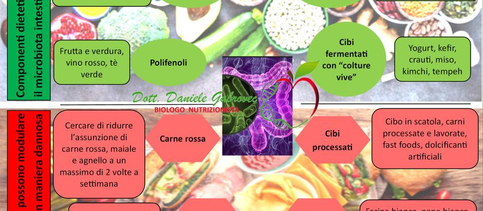 Infografica: Dieta e Microbiota