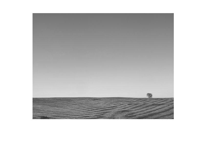Winter Drive | 13x19 (10x13 print size)