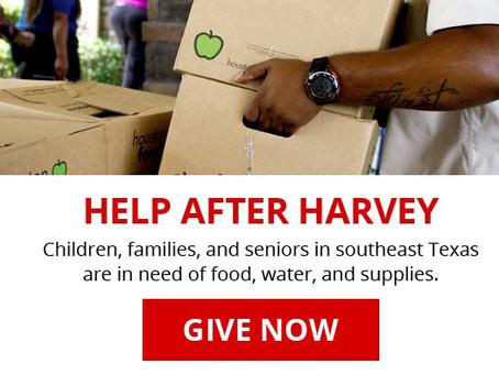 In Response to Hurricane Harvey
