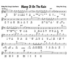 Blame it on the Rain.jpg