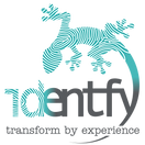 Identfy - transformby experience