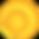 summer season icon