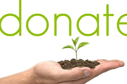 Donate a Potted Plant