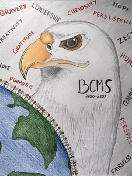 2020-21 BCMS Assignment Notebook