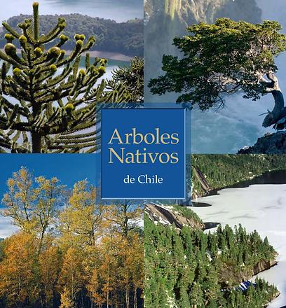 arboles nativos.png
