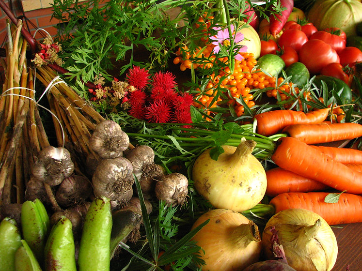 Ecologically_grown_vegetables.jpg