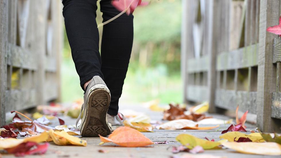 Fall Walking.png