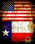 Omega Firearms U.S.A. Patriot Flag.jpg