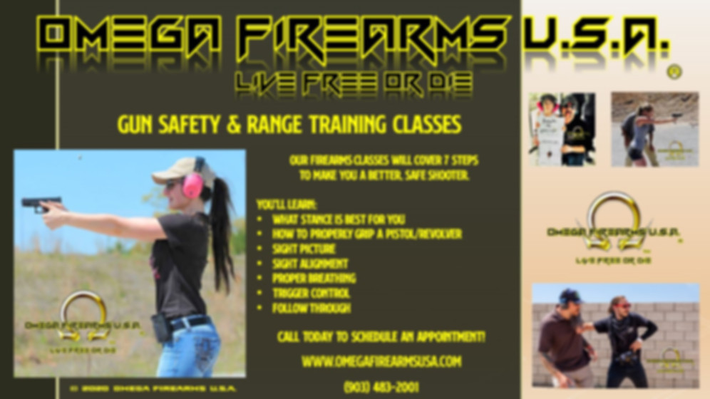 Firearms Training At Omega Firearms U.S.A.
