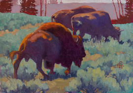 Yellowstone Park Herd