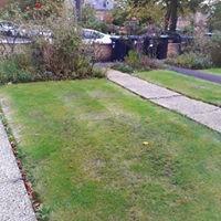 MJB42-GRASS.jpg