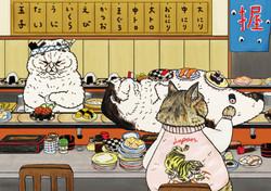 不思議的貓世界