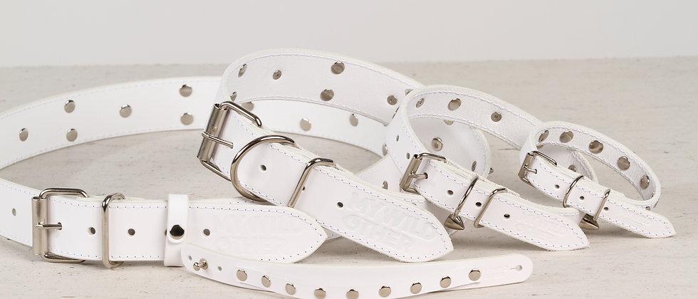 Human's wristband spikes on white