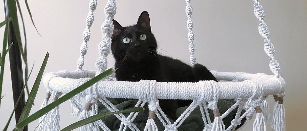 My Tiny Habits macrame cat hammock and 4 coasters